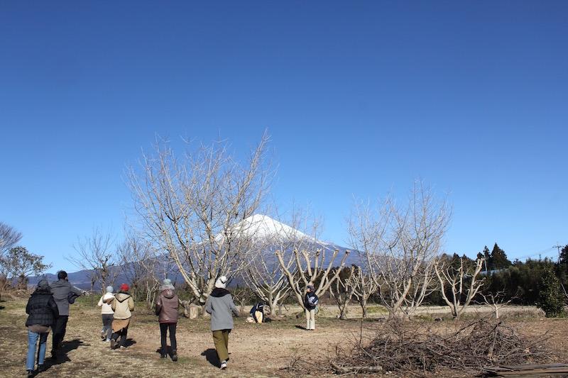 富士山を一望する宮ノ下広場