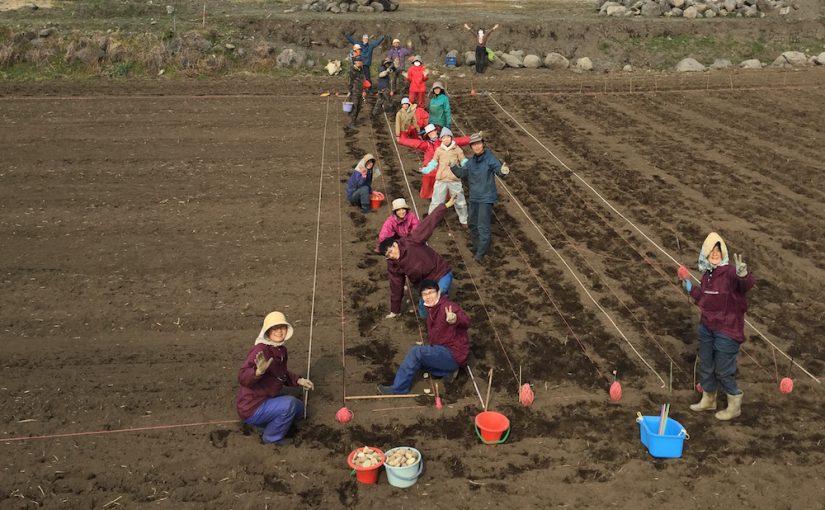 11日目午前「天然循環法 – 農  実習2」〜 ジャガイモ定植